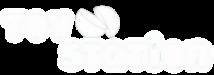 Logo Toystation Transparant 02